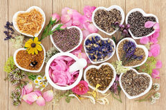 Traditional Herbal Medicine Stock Photos