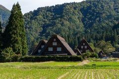 Traditional and Historical Japanese village Shirakawago. Beautiful outdoor scenery landscape Stock Photos