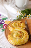 Traditional homemade Romanian and Moldovan pies - saralie. Royalty Free Stock Image