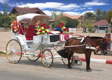 Traditional horse and carriage Royalty Free Stock Photo
