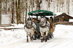 Traditional horse carriage ride during the winter Stock Photos