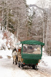 Traditional horse carriage ride during the winter time in Germany Royalty Free Stock Image