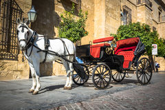 Traditional Horse and Cart at Cordoba Spain - travel background stock images