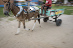 Traditional Horse and Cart Motion Blur Stock Photo