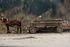 Traditional Horse and Cart Royalty Free Stock Image