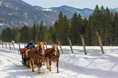 Traditional horse drawn carriage ride during winter Royalty Free Stock Images