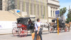 Traditional horse drawn carriages for sightseeing the Havana city. stock footage