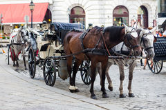 Traditional horse-driven carriage Royalty Free Stock Images