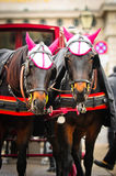 Traditional horse transport Royalty Free Stock Images