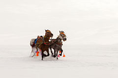 Traditional horse transport with toboggan on Lake Cildir Stock Photos