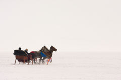 Traditional horse transport with toboggan on Lake Cildir Royalty Free Stock Images