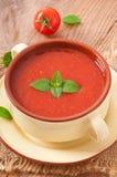Fresh diet tomato soup Stock Photos