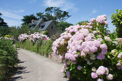 Traditional house  with garden in bretagne, France Royalty Free Stock Photos