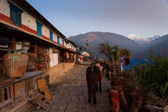 Traditional house in Himalaya Mountain Village with Annapurna I Stock Photography