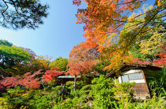Traditional House in Japanese Garden Stock Photo