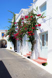 Traditional house in Kythera island, Greece. Traditional house with red flowers in Kythera island, Greece royalty free stock photo