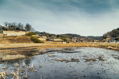 Traditional house with rice fields at winter in Gyeongju Yangdong Village UNESCO World Heritage Royalty Free Stock Image