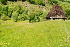 Traditional house with straw roof Stock Photos