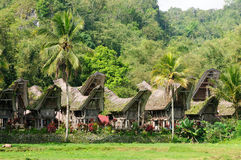 Traditional house on the Toraja village Royalty Free Stock Photography