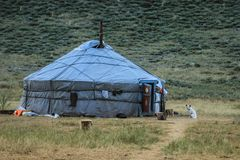 The traditional house is a yurt of Tuva and Mongol nomads. The dog is guarding the house stock image