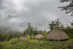 Traditional houses in Baliem Valley Stock Images