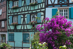 Traditional houses in Colmar Royalty Free Stock Image