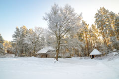 Traditional houses in forest Stock Photos
