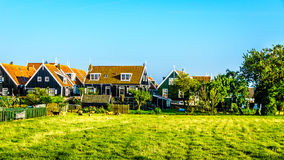 Traditional houses in the historic village of Marken in the Netherlands Royalty Free Stock Photos