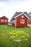 Traditional houses in Lofoten, Norway. Color image of some traditional houses in Reine, Lofoten Islands, Norway Royalty Free Stock Images