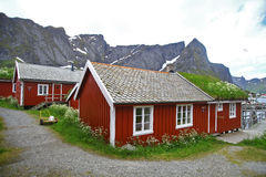 Traditional houses in Lofoten, Norway. Color image of some traditional houses in Reine, Lofoten Islands, Norway Stock Images