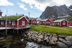 Traditional houses in Lofoten, Norway Royalty Free Stock Photos