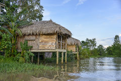Traditional houses on Mekong river, Vietnam Royalty Free Stock Image