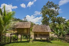 Traditional houses of the native people of indonesia in village. Kalimantan royalty free stock image