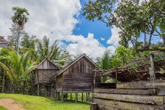 Traditional houses of the native people of indonesia in village. Kalimantan stock photography