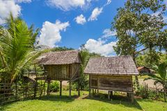 Traditional houses of the native people of indonesia in village. Kalimantan royalty free stock photos