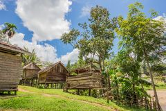 Traditional houses of the native people of indonesia in village. Kalimantan royalty free stock images