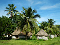 Traditional houses of Navala village, Viti Levu, Fiji Royalty Free Stock Photos