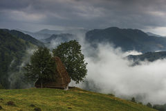 Traditional houses with straw roof and fog Stock Images