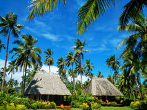 Traditional houses with thatched roof on Vanua Levu Island, Fiji. Vanua Levu is the second largest island of Fiji Royalty Free Stock Images