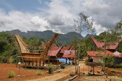 Traditional houses in Toraja Province Royalty Free Stock Photos