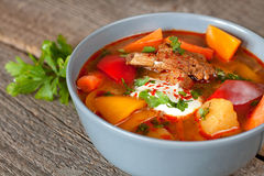 Traditional hungarian dish bograch goulash Royalty Free Stock Photo