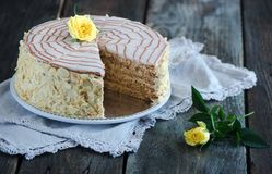 Traditional Hungarian Esterhazy cake Stock Images