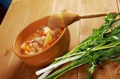 L Hungarian hot goulash soup Royalty Free Stock Photos