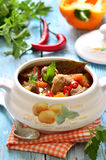 Traditional hungarian soup goulash. Stock Images