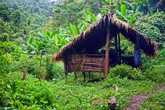 Traditional hut, campsite in lush tropical forest, Nam Ha National Protected Area, Laos. The Nam Ha NPA, located in Luang Namtha province, is Lao s first stock images