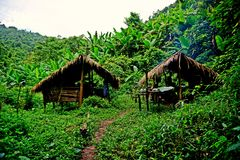 Traditional hut, campsite in lush tropical forest, Nam Ha National Protected Area, Laos. The Nam Ha NPA, located in Luang Namtha province, is Lao s first royalty free stock images