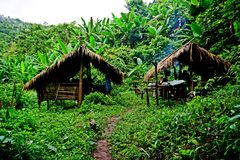 Traditional hut, campsite in lush tropical forest, Nam Ha National Protected Area, Laos. The Nam Ha NPA, located in Luang Namtha province, is Lao s first royalty free stock image