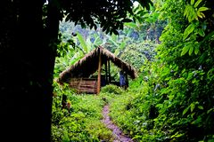 Traditional hut, campsite in lush tropical forest, Nam Ha National Protected Area, Laos. The Nam Ha NPA, located in Luang Namtha province, is Lao s first stock image