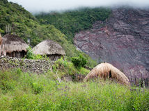 Traditional hut in  village. New Guinea Royalty Free Stock Photos