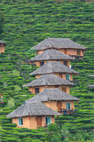 Traditional huts on the mountain Stock Images